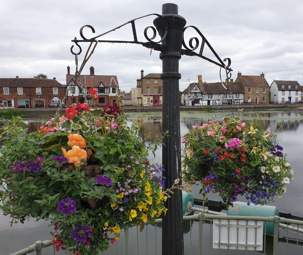 Photo of Hanging Baskets
